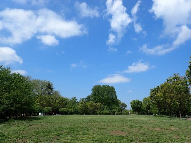 Hanako w/ Seibu−秋のピクニック− 西東京いこいの森公園