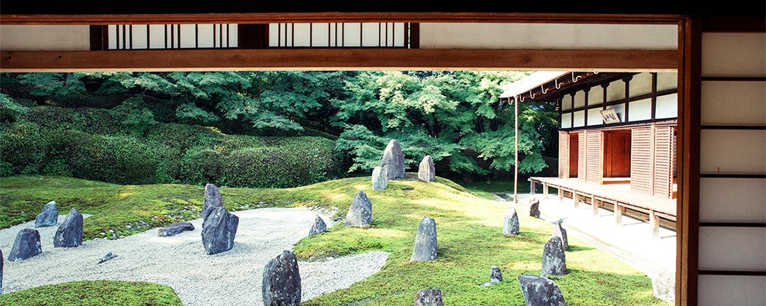 京都観光で訪れたいお寺5選!作庭家・庭園研究家おすすめの美しい苔庭。