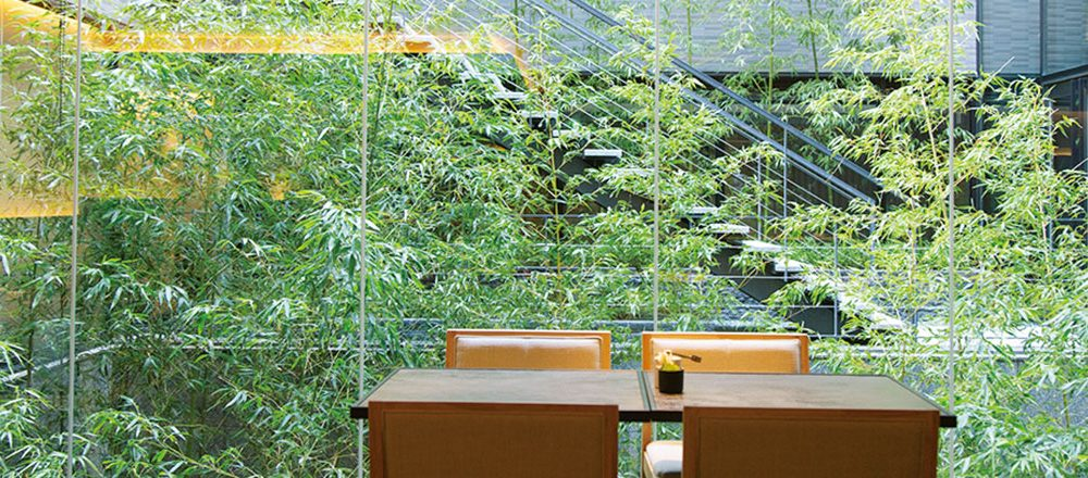 THE THOUSAND KYOTO TEA AND BAR