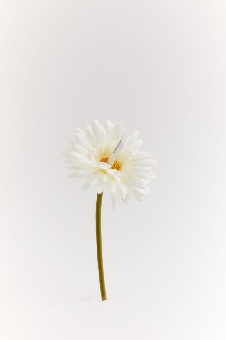 """(5)「 ハナコ 」:花の先に「プリティースリムL」がついているカモフラ ージュ型鼻毛切り。""""花""""と""""鼻""""をかけているのもツボ。"""