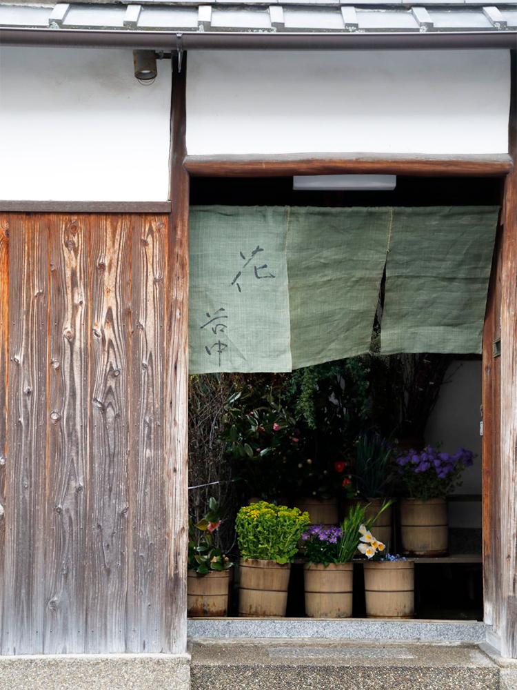 京都 花・谷中