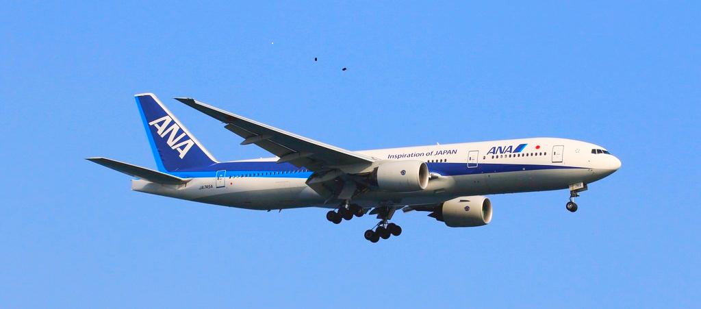 〈ANA〉の「プレミアムクラス」に乗って福岡女子旅へ。機内も滞在もとびきり楽しめる!