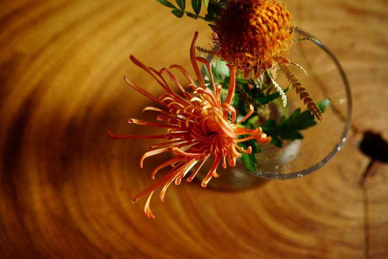 菊 飾り方 アレンジ