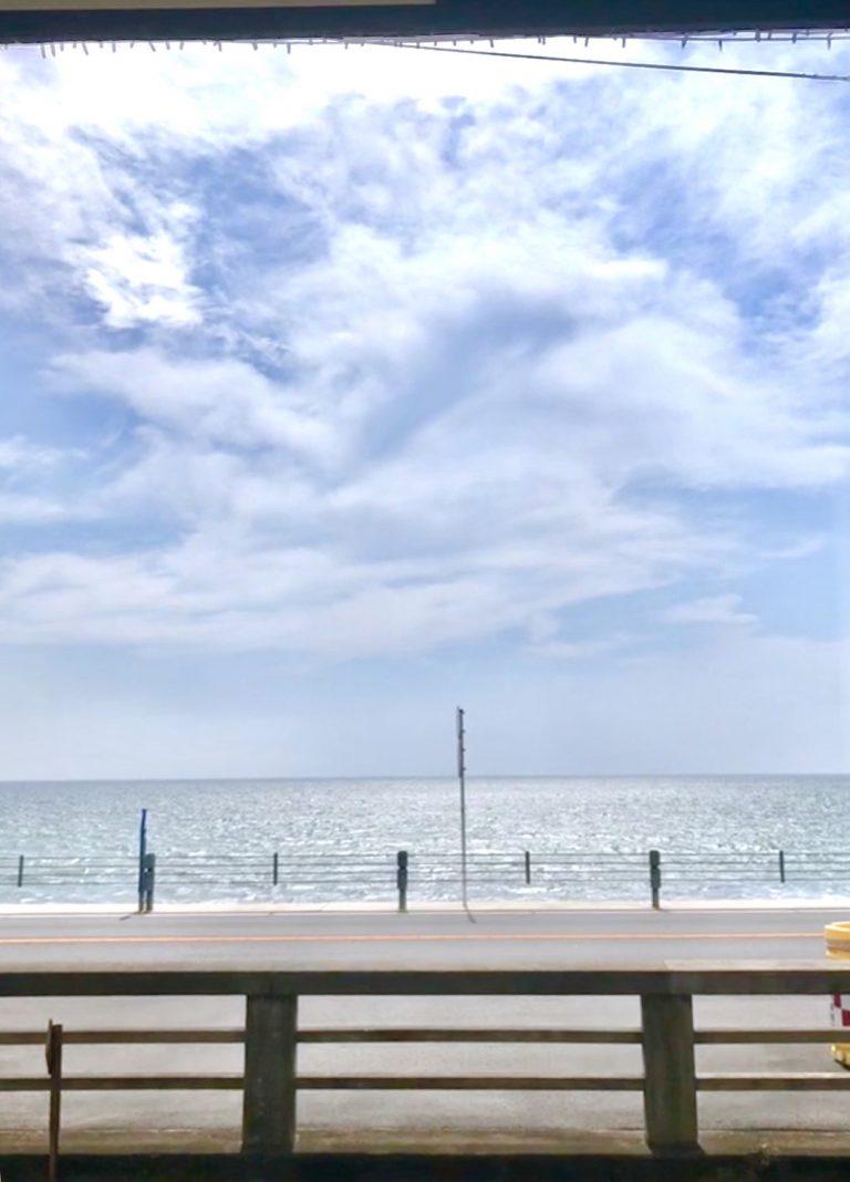 七里ヶ浜 bills 七里ヶ浜