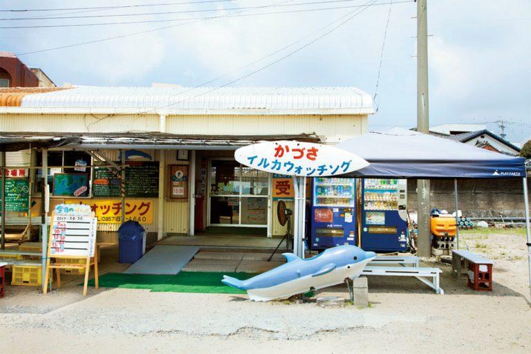 長崎 南島原 かづさイルカウォッチング