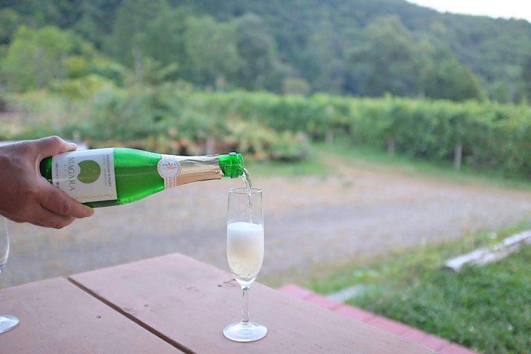 購入したワインをテラスで飲むことも可能。雄大な自然の中で飲むワインはより一層おいしい