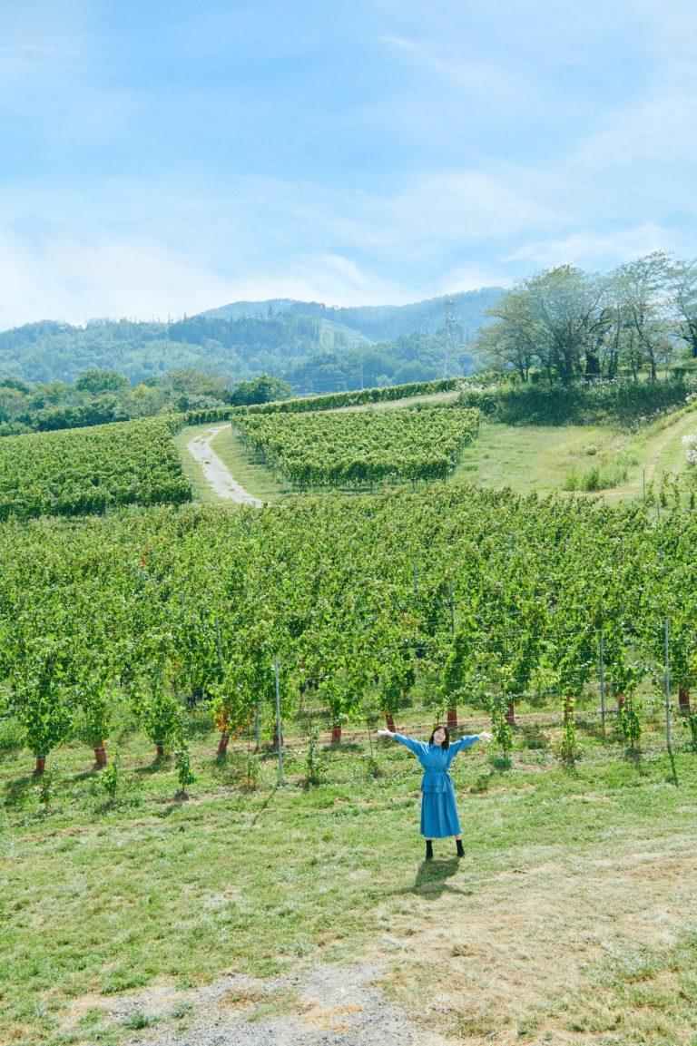 広大な敷地だから、土などの環境によって同じ品種でも違う味のブドウができるという。