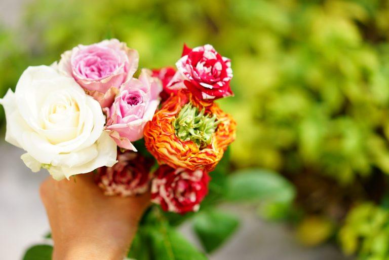 フラワーアーティスト・前田有紀の原点回帰。特別な花「バラ」との思い出とは。