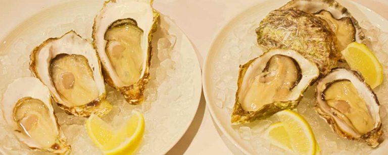 広島の生牡蠣を食べ比べ!銀座〈ひろしまブランドショップTAU〉に期間限定で『オイスターバー in TAU』を開催!
