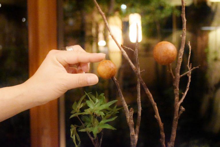 枝に刺されたブーダンの実を摘んで食べる。食べ方も斬新。