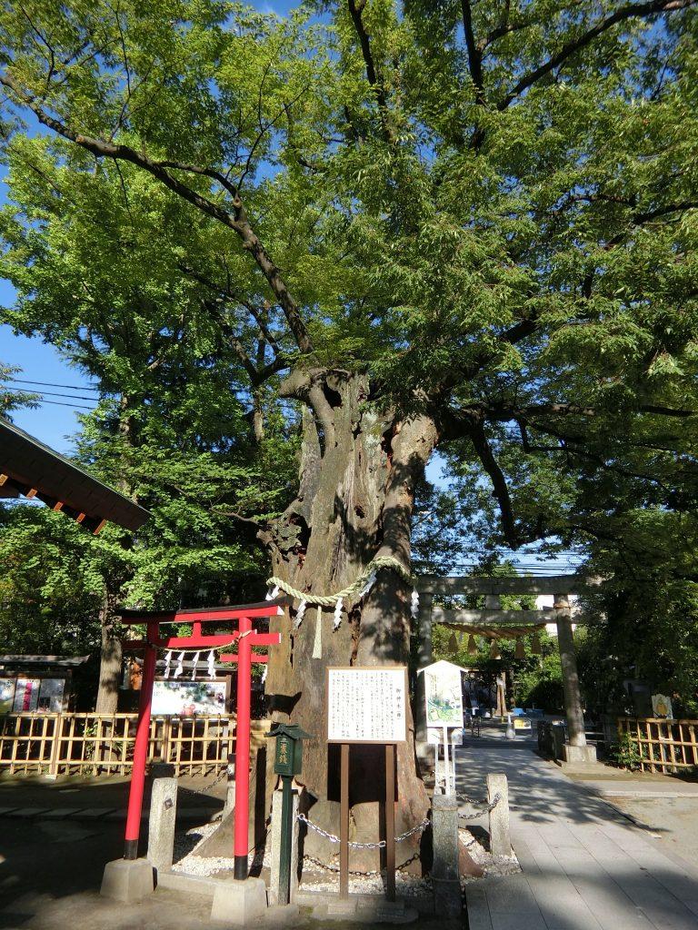 新田神社 東京