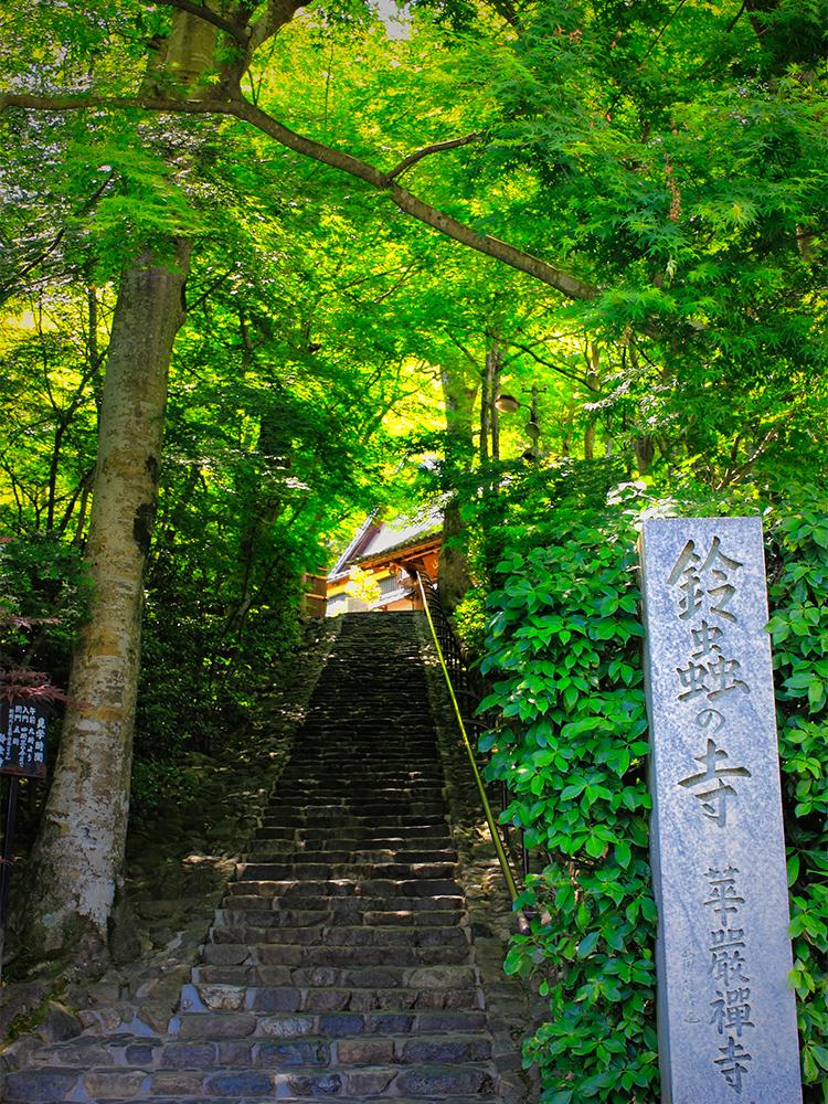 鈴虫寺(妙徳山 華厳寺) 嵐山