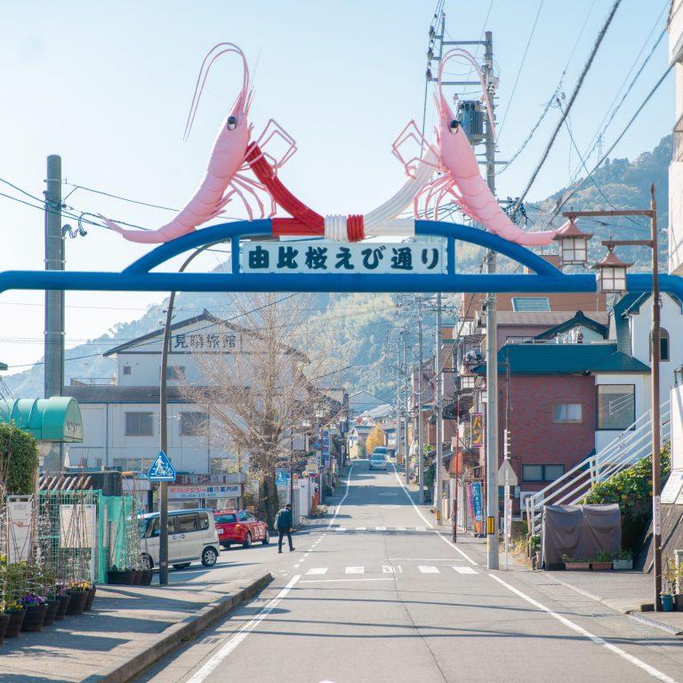 静岡 由比桜えび通り