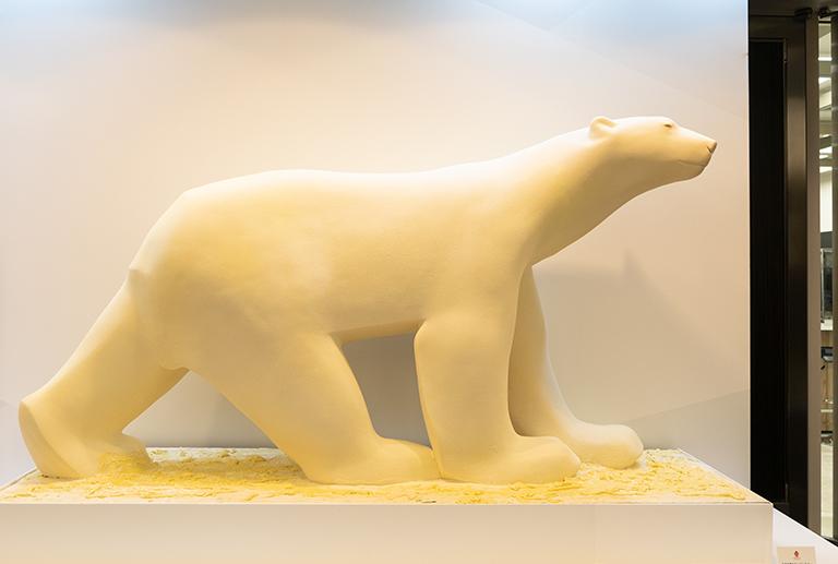 01_bear