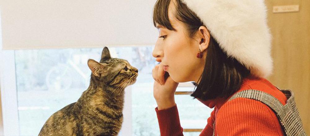 """猫好き必見!看板猫に癒されるとっておきカフェ&本屋3軒。""""会いに行ける猫""""が気になる。"""