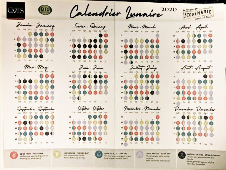 配られた2020年のムーンカレンダー。