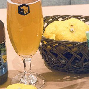 まるで搾りたてのゆずの香り!「YUZU Sparkling 〜FARM to SVB 高知産ゆず〜」が新発売。