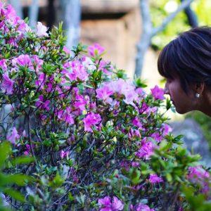 フラワーアーティスが考える、休息時間の過ごし方。「リモートワークで一息つきたいときは、身近な草花に目を向けて」
