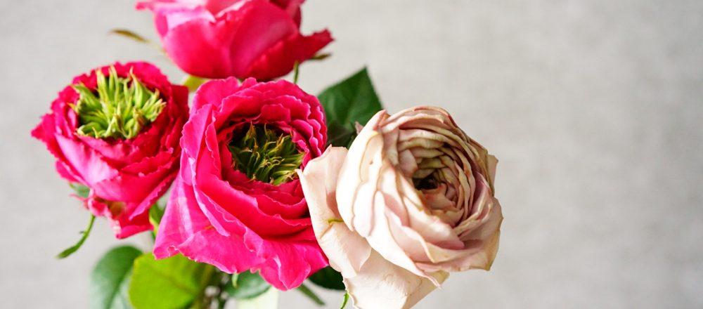 「花を作る人と飾る人の距離を縮めていきたい。」自粛期間で気づいた、仕事への想い。