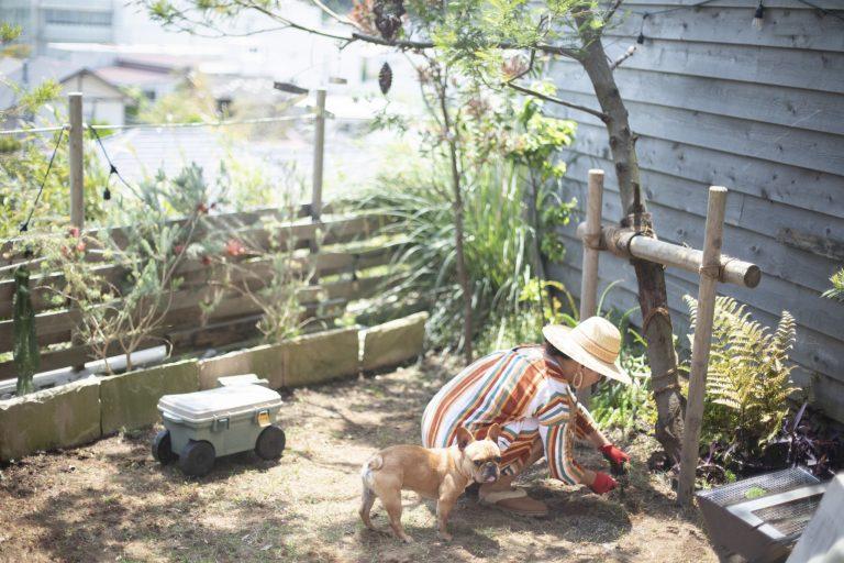 休日は愛犬のコスケと一緒に庭作業。