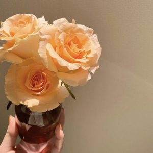 また、週1でお花を買ってお部屋をアップデート中。気分に合わせて、可愛い色のお花を選んで楽しんでいます。 写真はパリジェンヌというバラの一種。絶妙なピンクベージュ色味に一目惚れして即買いだったそう!  観葉植物と一緒に太陽に当たって運気をあげましょう! ■Instagram:@kumaidoharuka