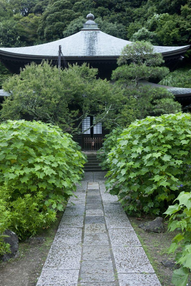 〈瑞泉寺〉/二階堂