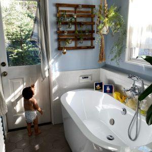 陽の光が差し込むバスルーム。庭と観葉植物がリンクする癒しの空間。