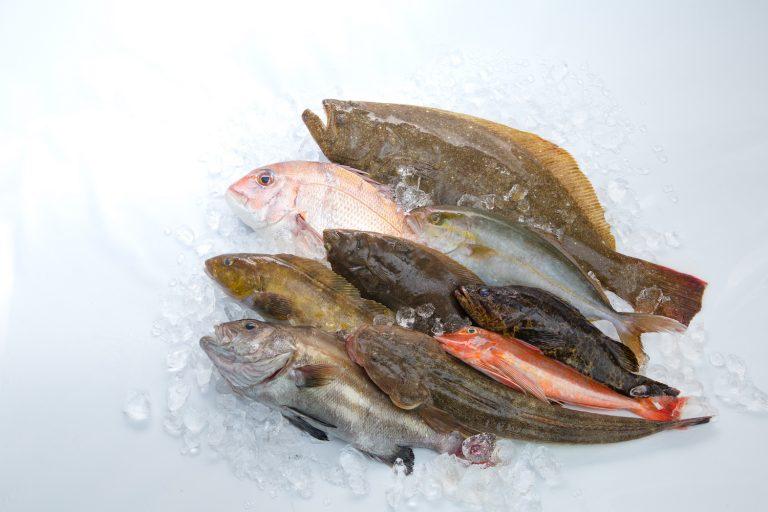 「鮮魚BOX」2kg セット3,240円、3kg セット4,860円(税込・送料別)。揚げされた鮮魚をその日のうちに処理(血抜きや〆処理等を施して鮮度を維持、エラ・内臓・ウロコを除去して家庭での下処理をサポート)、宮城県・石巻市から直送。魚種お任せの詰め合わせ。