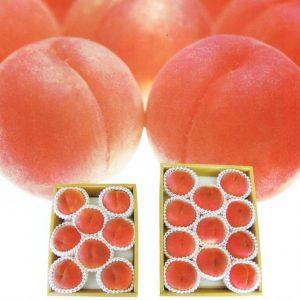 フルーツ王国やまなしが誇る旬の果物がいろいろ。