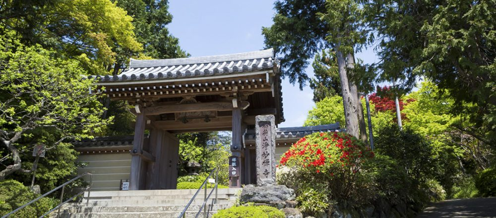 【鎌倉】おすすめお立ち寄りスポット4選!神社仏閣を参拝後は、アートやお茶でひと休み。