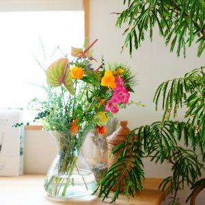 初夏はビタミンカラーのお花を楽しもう。夏ならではのお花は個性派揃い!