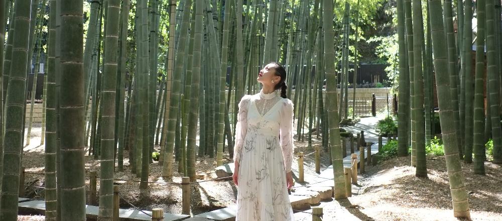 「ミシュラン・グリーンガイド」三ツ星の鎌倉〈報国寺〉を参拝。四季折々の美しい風景にうっとり。