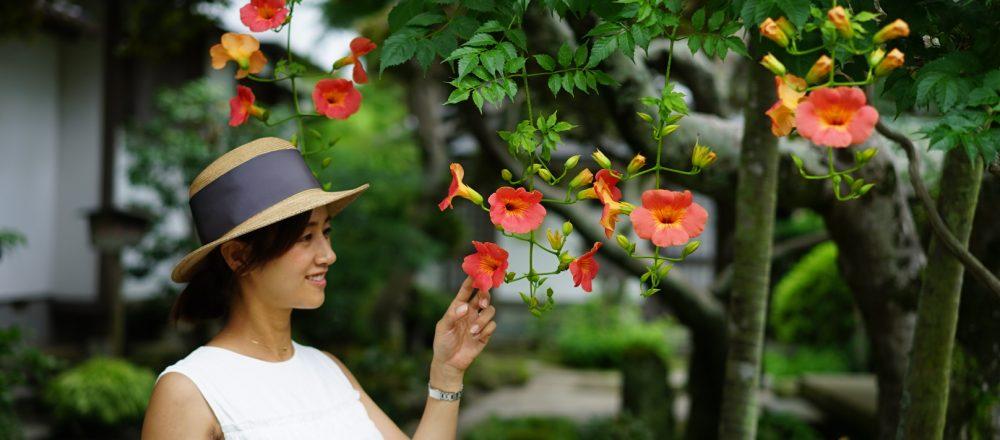 お花を楽しめる鎌倉〈海蔵寺〉の夏。子どもとの鎌倉散歩で出会った、色鮮やかな夏のお花たち。