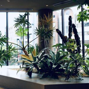 エントランスフロア奥には植栽が。ボーダレス、ジェンダーレスの人が集まる渋谷の多様性を力強いボタニカルで表現。