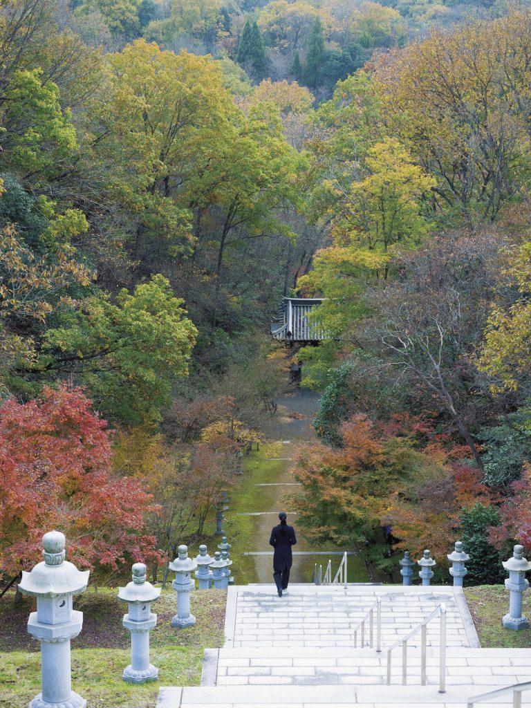 荘厳堂に行く途中にある長い階段。広大な敷地に広がる、四季それぞれに趣を変える日本庭園や建築散策も、ここにしかない体験。