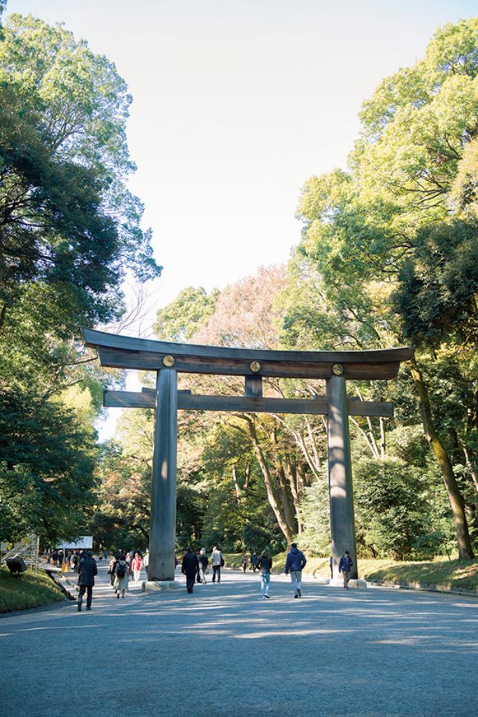 台湾産の檜で作られた大鳥居。木造として日本一の高さを誇る。南参道と北参道の出合い口に立つ大鳥居(第二鳥居)。高さ12m、幅17.1m、柱の太さは直径1.2mもあり、木造の明神鳥居としては日本一の大きさ。材木は台湾産の檜で、樹齢は1,200年以上に達していたといわれている。