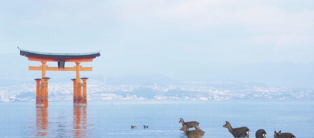 海上に浮かぶ世界遺産〈嚴島神社〉へ。【広島旅】縁結びや学問の神、必勝祈願のご利益も。