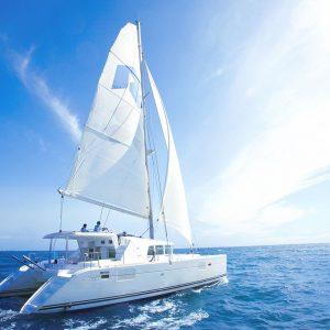 江ノ島や葉山を海から散策できるクルージングのほか、さまざまなアクティビティで自然を満喫!