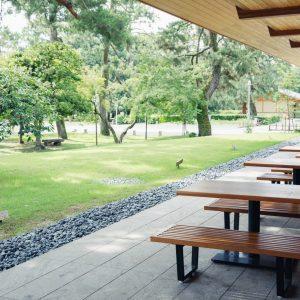 東側のテラス席は緑を見渡せる。木々の向こうには京都御所が。