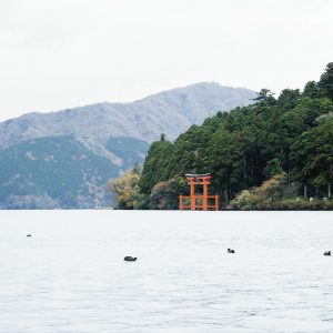 芦ノ湖畔から鳥居を望む。冬季以外、天気のいい日はボートで近づける。