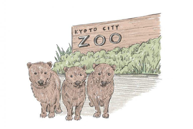 京都市動物園/京都・左京区