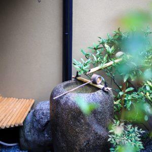 〈本日の〉京都