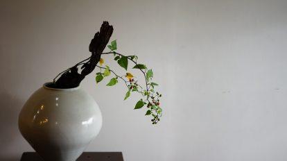 鎌倉・海辺のギャラリー〈UMI 招山 由比ヶ浜〉で行われた、『森 …
