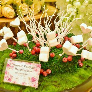 「眠れる森の収穫祭 マシュマロ」。