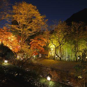 夜はライトアップされ、日中とは一味誓った景色が楽しめる。