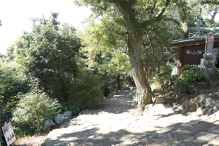 金華山は歩いて登ると1時間ほどかかるそう。