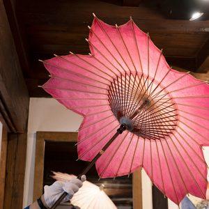 桜の和傘。