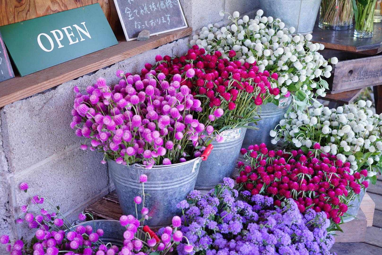 フラワーアーティスト・前田有紀が山梨、長野出張で見つけたおすすめ店。業界では有名な花屋も!