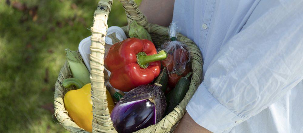 朝採れ野菜がこんなに!