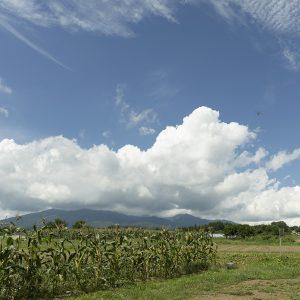 日照時間が日本一といわれる農耕地帯が広がる。